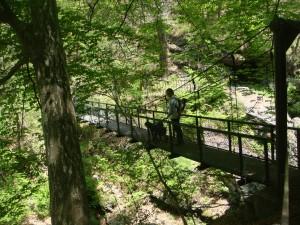 吊り橋をおっかなびくり渡ります